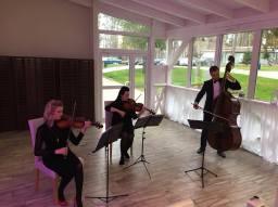 2017 / Trio Brindisi w nowym składzie
